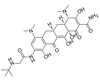 GAR-936 Tigecycline 220620-09-7